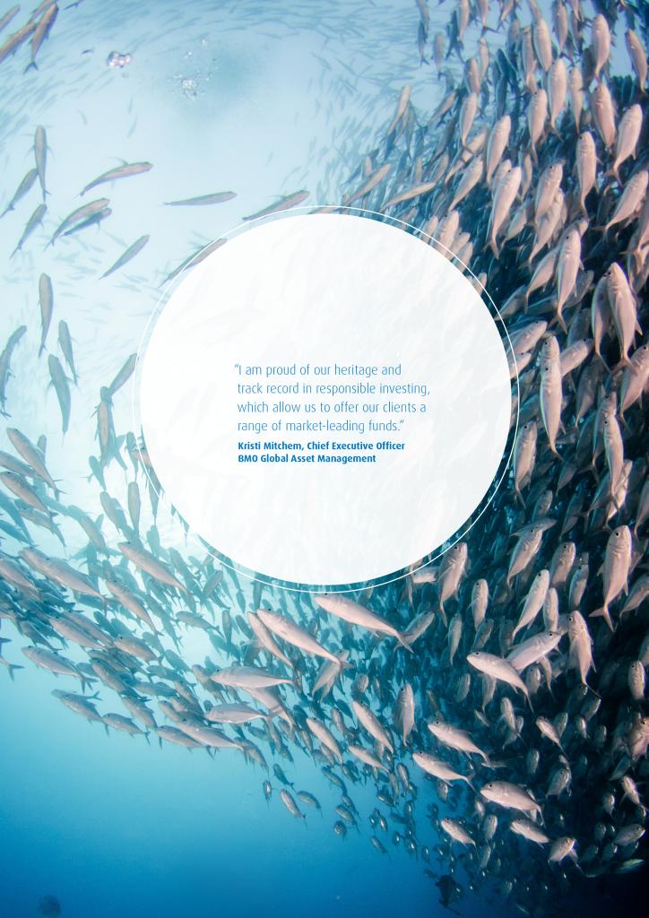 Leaders in ESG Data Visualization: BMO Global Asset Management 17