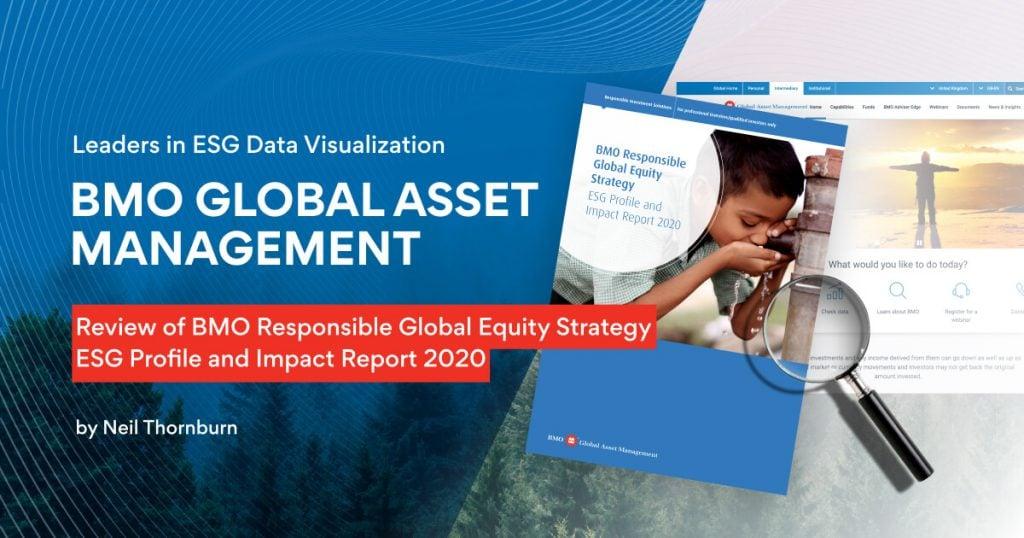 Leaders in ESG Data Visualization 3